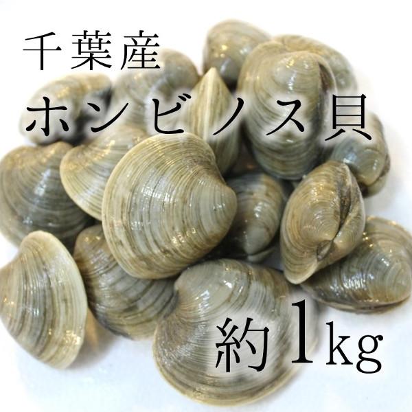 人気沸騰中の貝類 ホンビノス貝 人気の製品 大アサリ 白ハマグリ 1キロ 約70-120g 大サイズ BBQに最適 特価 豊洲直送 BBQ 冷蔵 honbinosuビノス1K バーベキュー 千葉 他 海鮮 愛知