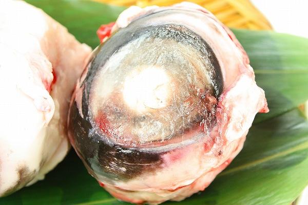 筑地最佳 ★ 金枪鱼眼球 < 1 > 金枪鱼是好 DHA 和胶原丰富丰满金枪鱼眼球