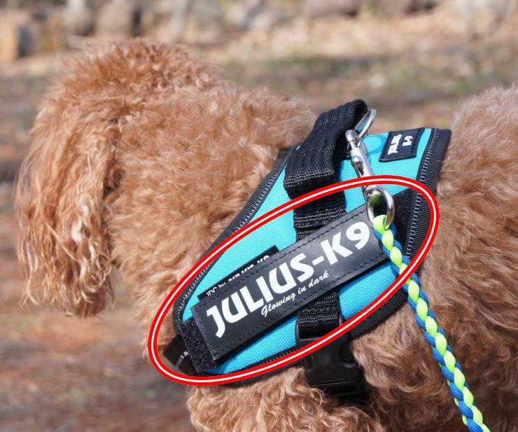 ラベル Julius-K9 日本未発売 ユリウスケーナイン デポー IDCパワーハーネス用ラベル 送料無料