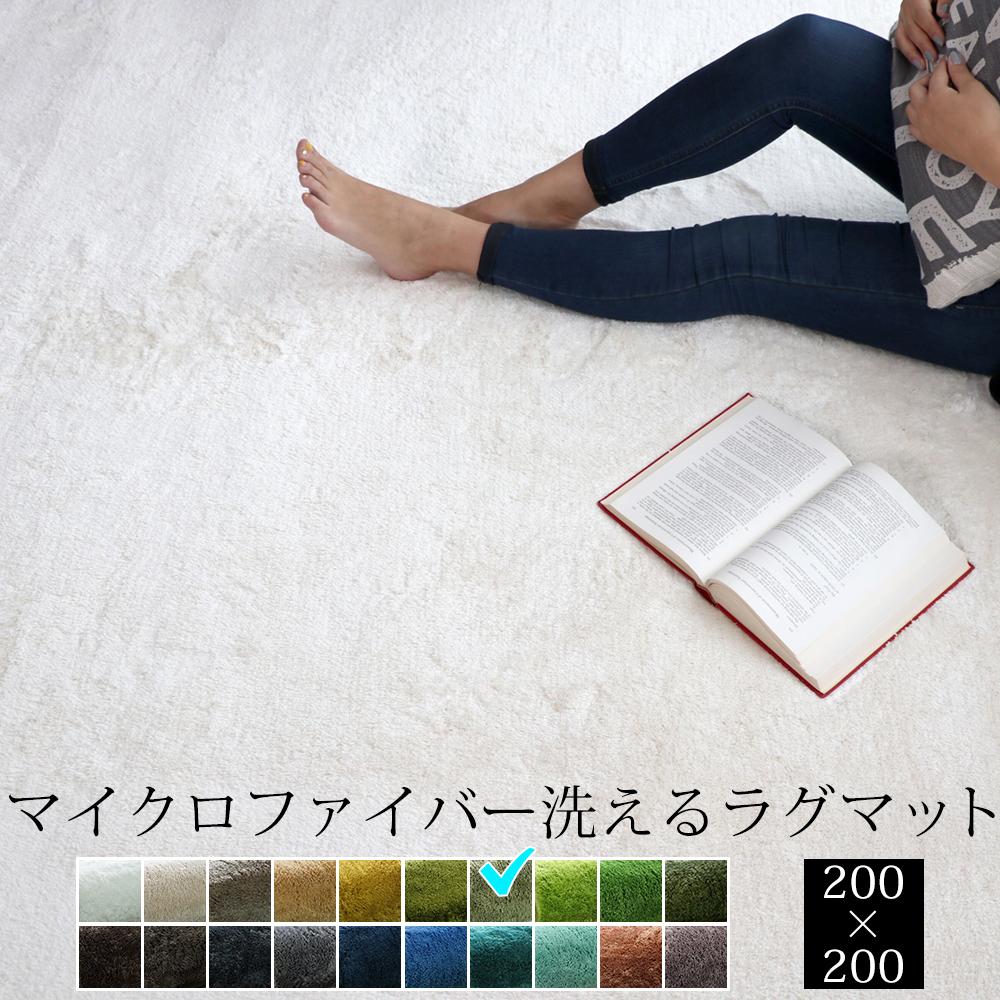 EXマイクロファイバー洗えるラグマット (200×200cm) セイジグリーン