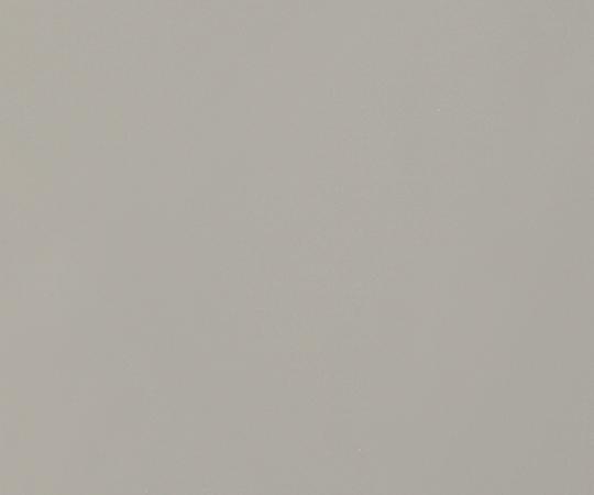 いまだけ!★ポイント最大15倍★【全国配送可】-金属製メッシュ 純ニッケルナノメッシュ 2 その他 型番純ニッケルナノメッシュ2 aso 2-9818-12 -【医療・研究機器】