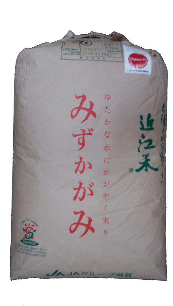 滋賀県産みずかがみ(減農薬)(近江米)30年産1等米25kg玄米