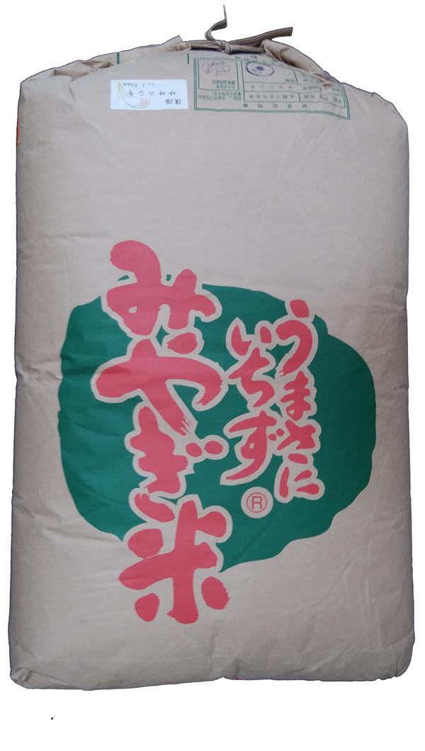 宮城県登米産ササニシキ(減農薬)30年産1等米・特A米25kg玄米