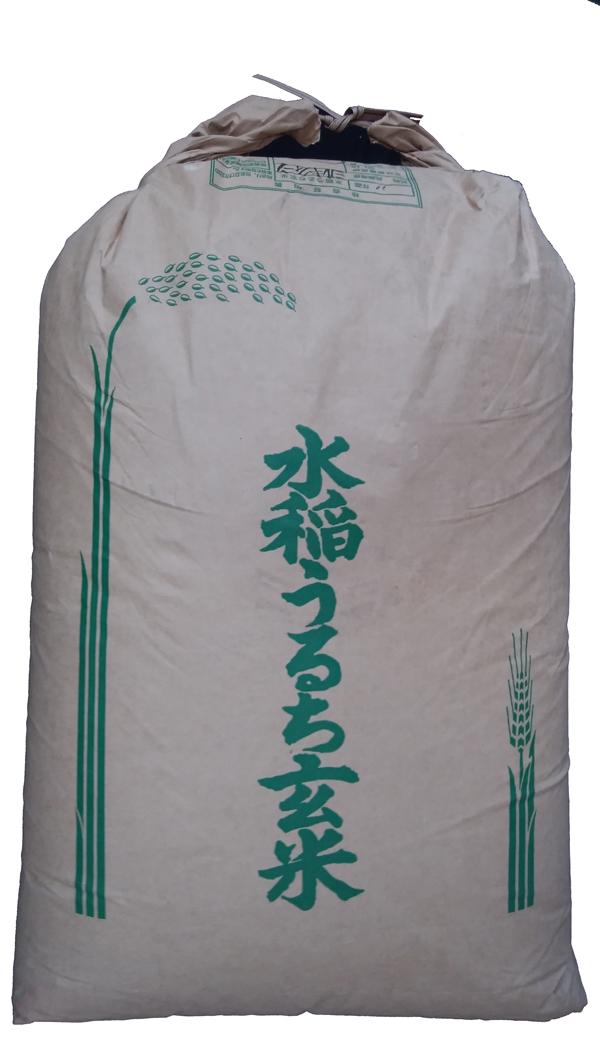 兵庫県産ミルキークイーン30年産1等米25kg玄米