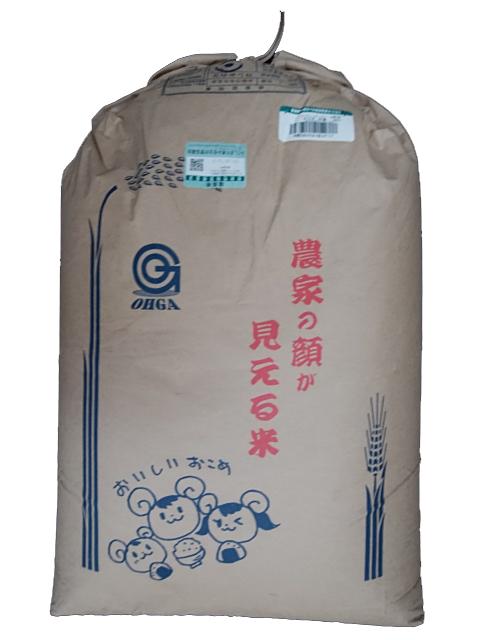 福島県中通産コシヒカリ令和元年産1等米・特A米25kg玄米