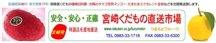 宮崎くだもの直送市場:太陽のタマゴ・宮崎産完熟マンゴー・種無日向夏・エクセレント・完熟金柑