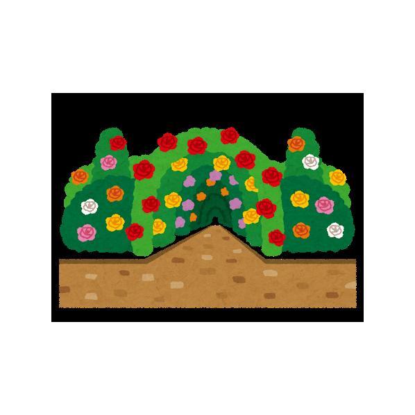 マカロン ガーデンシュレッダー 黒 maca-ron2 1台
