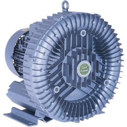昭和 電動送風機渦流式高圧シリーズガストブロアシリーズ0.4/0.5kW U2S-40T