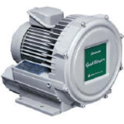 昭和 電動送風機渦流式高圧シリーズガストブロアU2Vシリーズ0.07kW U2V-07S