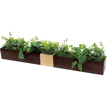 ベルク 卓上ポット カップ付 GM4737 植物 緑 インテリア