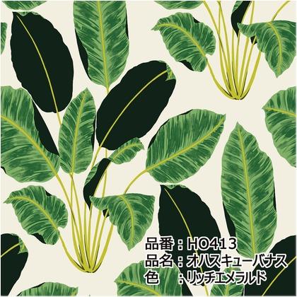 テンペーパー TEMPAPER 貼ってはがせる壁紙シール オハスキューバナス リッチエメラルド 長さ10m 幅52cm HO413