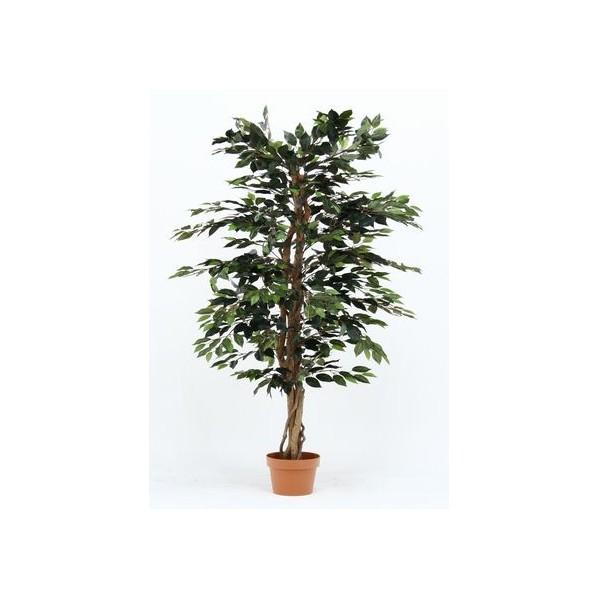 フジボウエキ 観葉植物 フィカス 1124 A グリーン グリーンデコ鉢付 52662 19840 1台