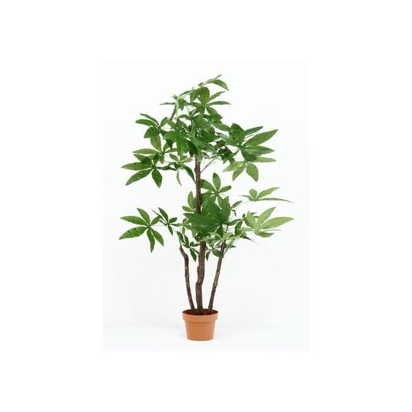 フジボウエキ 観葉植物 パキラ スタンダード グリーンデコ鉢付 グリーン 52666 3967 1台
