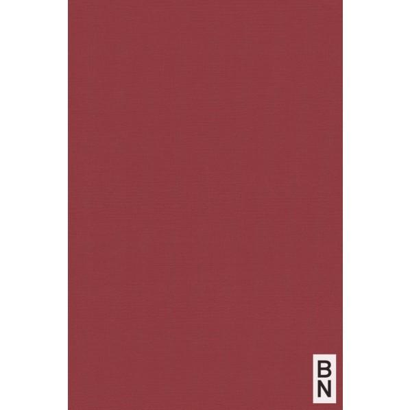 BN ESPOIR NEW AGE 壁紙 219506 1本