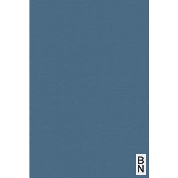 BN ESPOIR NEW AGE 壁紙 219513 1本