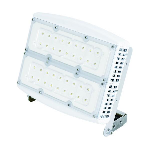 日動 日動 スクエアライト100W 電源装置一体型 吊下げ型 昼光色 ワイド 345 x 360 x 170 mm 作業灯・照明用品