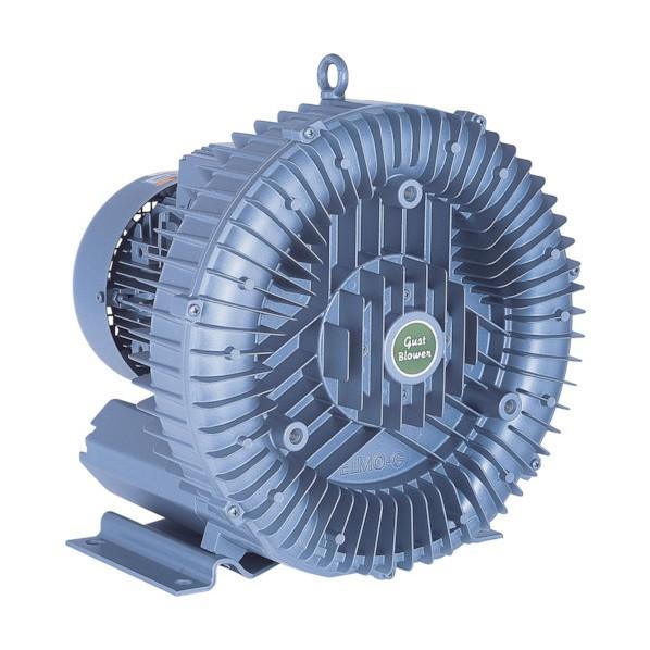 昭和 昭和 電動送風機 渦流式高圧シリーズガストブロアシリーズ1.1/1.7kW U2S-150 環境改善機器