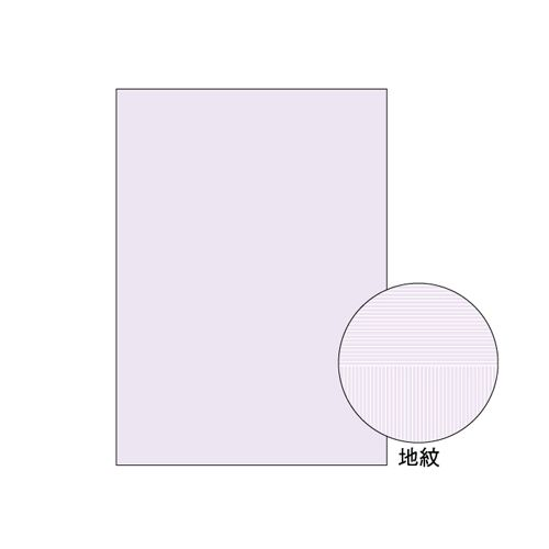 ヒサゴ A4 コピー判別用紙 両面大入り (BP2110Z)  文具・OA機器 文具・事務用品