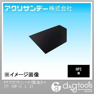 アクリサンデー HP-2 PPクラフトシート(発泡タイプ) 黒 450×900×2(mm) HP-2 L L 黒 2, 有明町:d41d8cd9 --- rakuten-apps.jp