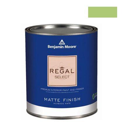 ベンジャミンムーアペイント リーガルセレクトマット 艶消し エコ水性塗料 stem green 4L (G221-2029-40) Benjaminmoore 塗料 水性塗料
