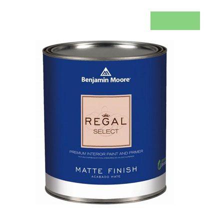 ベンジャミンムーアペイント リーガルセレクトマット 艶消し エコ水性塗料 citrus green 4L (G221-2032-40) Benjaminmoore 塗料 水性塗料