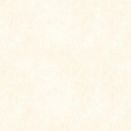 フクビ化学工業 浴室・水廻り用 壁面パネル アルパレージ ホワイト 910×2450mm (AP2NEH) 1枚