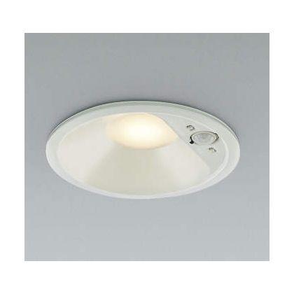 コイズミ照明 LED防雨防湿ダウン  AD41931L