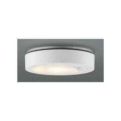 コイズミ照明 LED防雨型直付器具  AU42189L