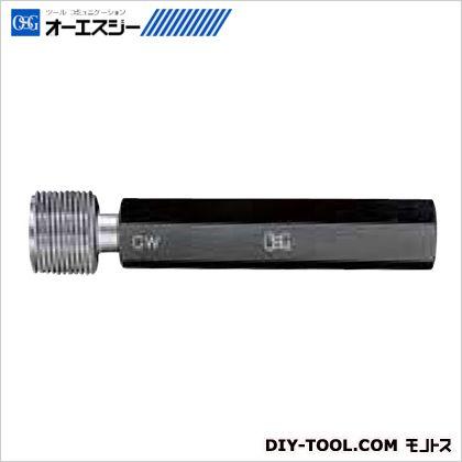 OSG ゲージ 9338231  LCG GW 2 M22X1.5