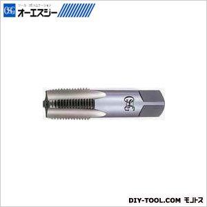 OSG タップ 8309123  CPM-S-TPT 2 PT3/8-19