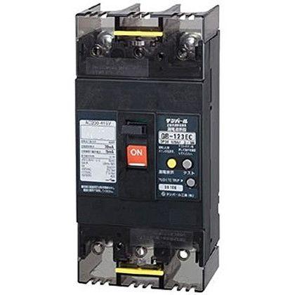 Eシリーズ(経済タイプ)漏電遮断器(OC付)125A(30kW) (123EC12W24)