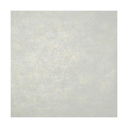 リーガル 輸入壁紙THEBLOOMINGHOUSE5 8.2m R0128