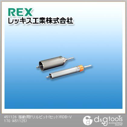 レッキス 振動用ドリルビット(セット)RDB-V 170  451125