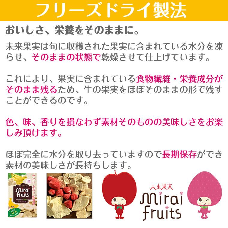 フリーズ ドライフルーツ 砂糖不使用 無添加 ミライフルーツ バナナ 赤ちゃん おやつ