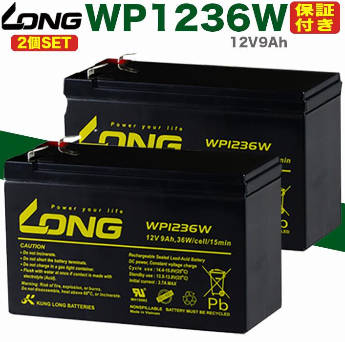 Smart-UPS バッテリー WP1236W 12V9Ah GSユアサ RE7-12 パナソニック 日立 SUA500JB 人気海外一番 Smart-UPS700 保証書付き Smart-UPS1400RM ユタカ電機 激安価格と即納で通信販売 送料無料 2個SET 蓄電器用バッテリー完全密封型鉛蓄電池 RS900 BR900-JP 無停電電源装置 WP1236WAPC Smart-UPS500
