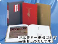 原田泰治作品集 画集全2巻【一括払い】