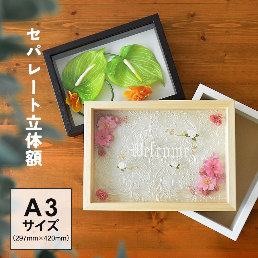 中身を支えるパーツが2段に分かれているから立体作品や立体と平面作品を組み合わせたりと自由なフレーミングが可能なフレーム ウェルカムボード 額 ボックスフレーム 立体額 セパレートタイプ A3 297×420 額縁 a3 プリザーブドフラワー アーティフィシャルフラワー 花 造花 思い出 飾る ポスターパネル ブライダル フレーム 手作り アートボックスフレーム