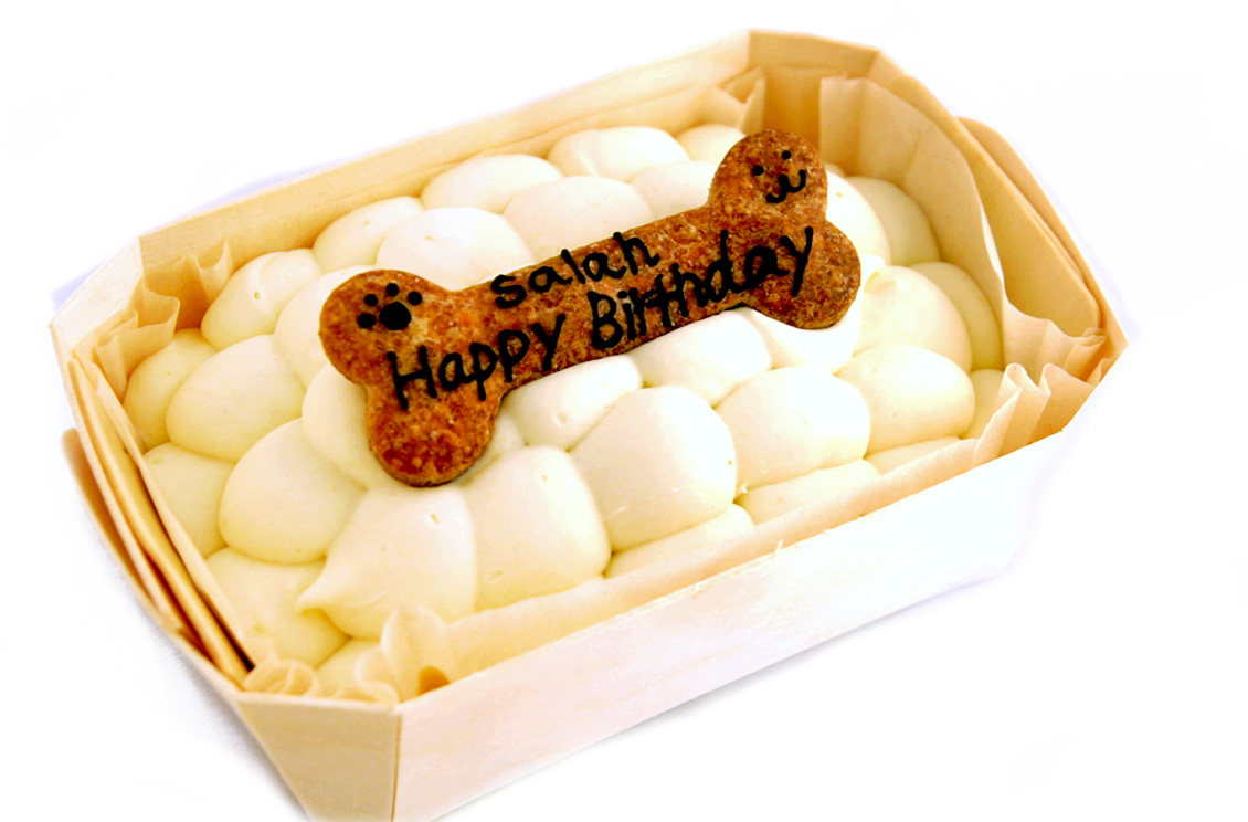 人間用と同じ素材でワンコのためにパティシェがひとつずつ手作りしています ワンコ 犬用 デコレーションケーキ スクエア小 手作り 無添加 ケーキ プレゼント メッセージ 豪華な 誕生日 ごちそう 一緒に食べられます 正規品送料無料 ごはん