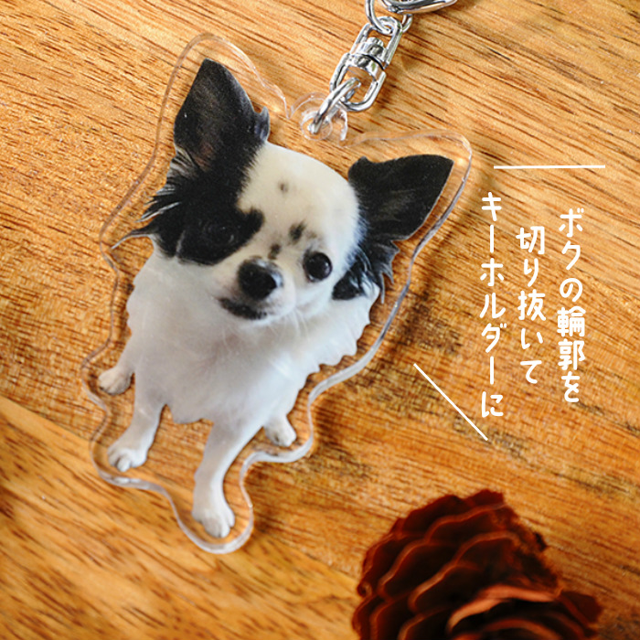 Personalised Wooden Photo Keyring Pet Dog//Cat Best Friend Memorial Present//Gift