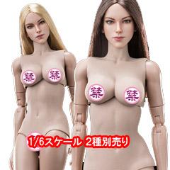 ベリークール 1/6スケール女性フィギュア 2種別売り 【VeryCool】FX07 AB 1/6 Supermodel Head Sculpt + Female Body Set 1/6スケール 女性ボディ素体