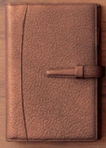 【レア商品】【ギフトにもオススメ!】【初回生産分限定】レイメイダヴィンチジャストリフィルサイズ聖書(バイブル)システム手帳エアリーゴート ブロンズゴールド手帳と同色のカードケース付