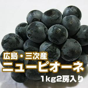 黒い真珠 [並行輸入品] 広島産のぶどうといえば 三次産ピオーネ 広島 2房入り 海外限定 ニューピオーネ 三次産 1kg