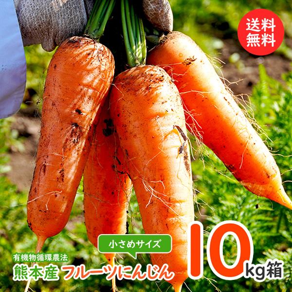 買い物 期間限定特別価格 にんじんジュースに最適 フルーツ人参10kg箱入り 小さめサイズ