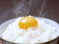 【送料無料】【烏骨鶏 卵】【うこっけい たまご】天来烏骨鶏卵 6個入り