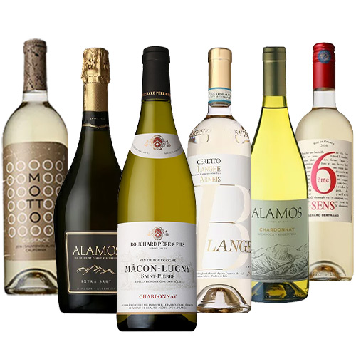 高級辛口泡を含む白ワイン6本セレクト 日本ソムリエ協会名誉会長岡昌治氏とコラボレーション企画 送料無料