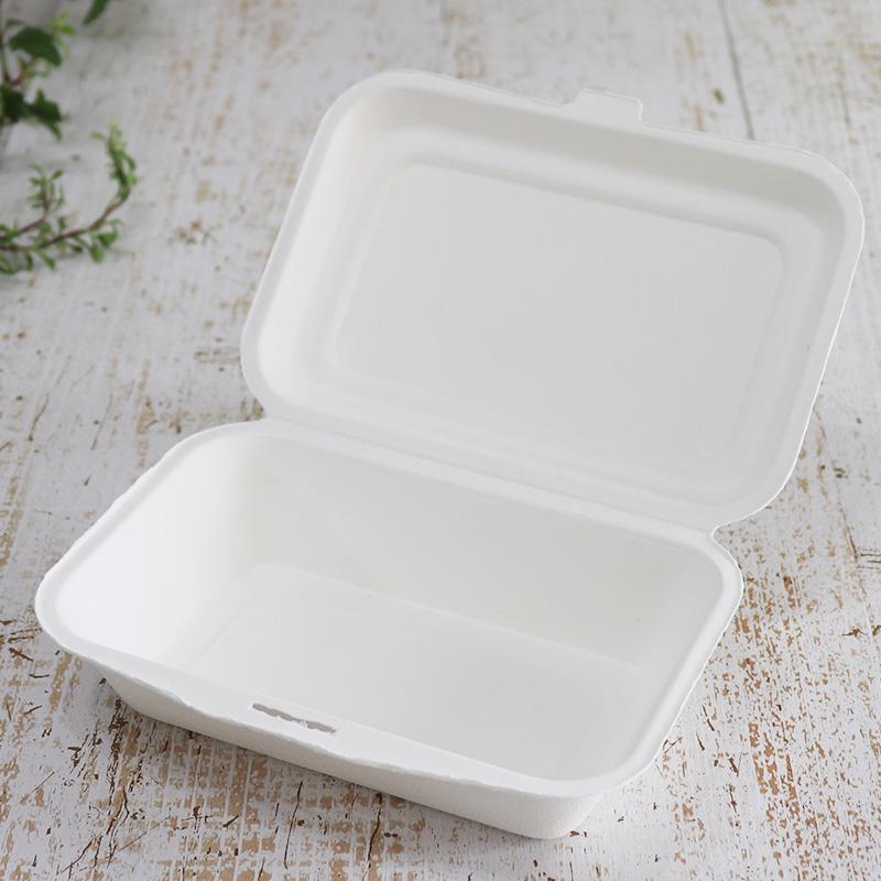 バガス 再生紙製容器 バガスモールド ランチボックス 450ml 172×123×36 800個セット (サトウキビの搾りカスから再生された堆肥可能なパルプ製)業務用 大容量 (メーカー直送品)