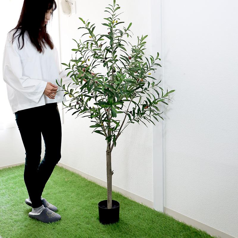 フェイクグリーン 人工観葉植物 オリーブの木 高さ152cm グリーン 観葉植物 造花 大型 インテリア 店舗 ショップ おしゃれ ショウルーム