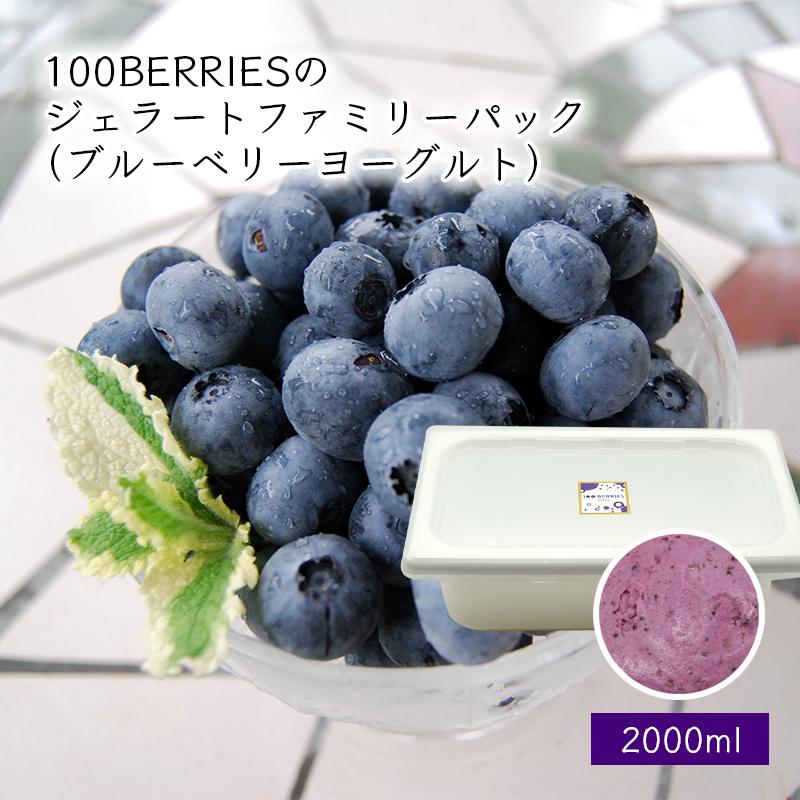 100BERRIESのフルーツが1年中味わえる ちょっと贅沢なプレミアムジェラートです ぜひ口の中いっぱいに広がる 完熟フルーツ×ジェラート 安心の定価販売 ブルーベリーヨーグルト 箱入 のハーモニーをお楽しみください お気に入 100BERRIESのジェラートファミリーパック2000ml