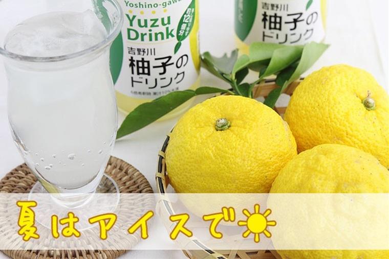 さめうらフーズ 吉野川柚子のドリンク 360ml×30本 高知県 四国 フルーツ ドリンク 条件付き