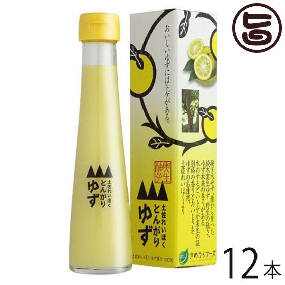とんがりゆず 120ml×12本 高知県 四国 フルーツ 果汁100% 条件付き送料無料